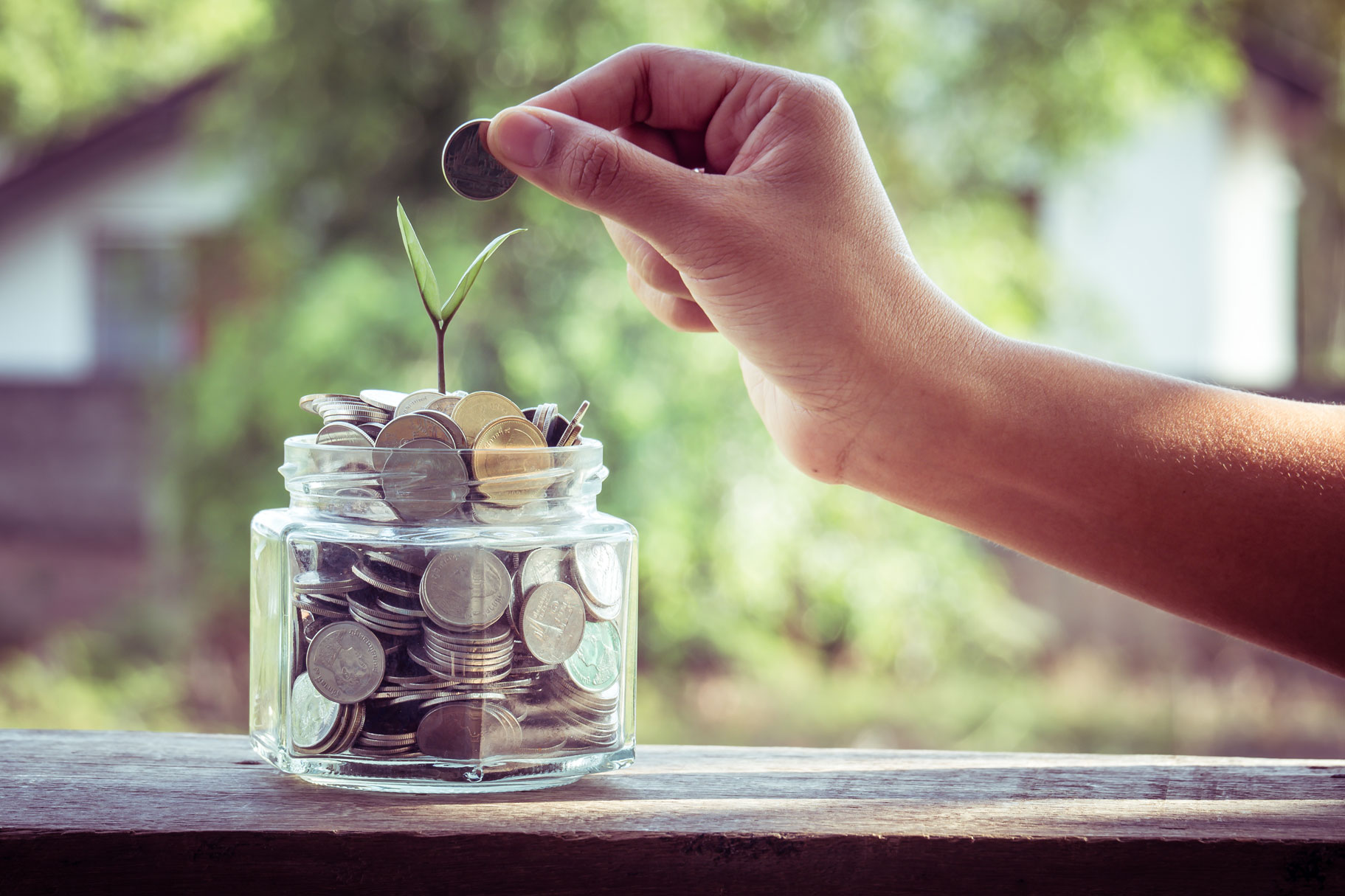 is-it-worth-it-to-go-solar-pic is a hand putting a dime in a jar full of coins with a leaf growing from the jar